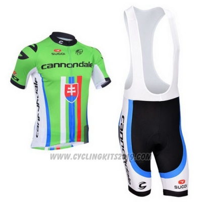2013 Cycling Jersey Cannondale Campione Slovakia Short Sleeve and Bib Short