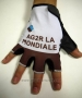 2015 Ag2r Gloves Cycling